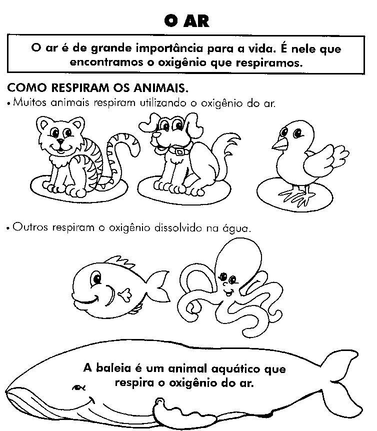 Amado ATIVIDADES SOBRE MEIO AMBIENTE PARA 1º E 2º ANOS. ANIMAIS, PLANTAS  HI88