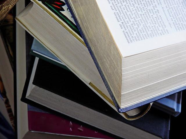 Por que ler é importante?