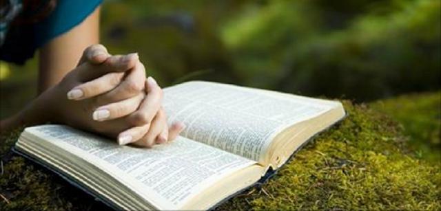 O Hábito de Agradecer – Enquanto o Sábio Agradece o Pobre de Espírito Reclama