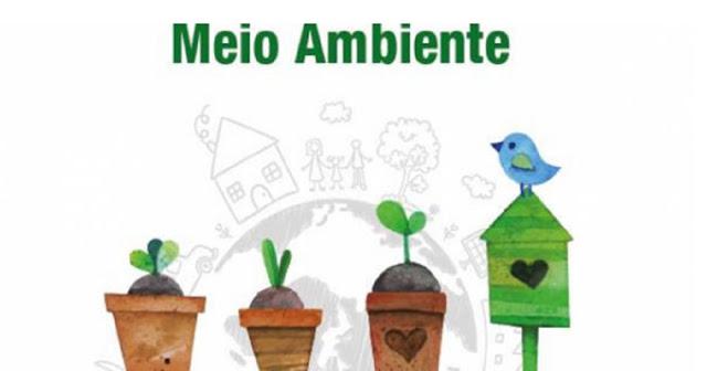 Para comemorar o dia Mundial do Meio Ambiente trabalhando a conscientização, separamos as melhores atividades educativas sobre o tema.