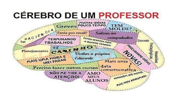 Cérebro de um professor