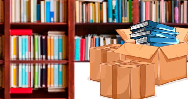Com base em parecer técnico, MEC recolhe das escolas o livro 'Enquanto o sono não vem'