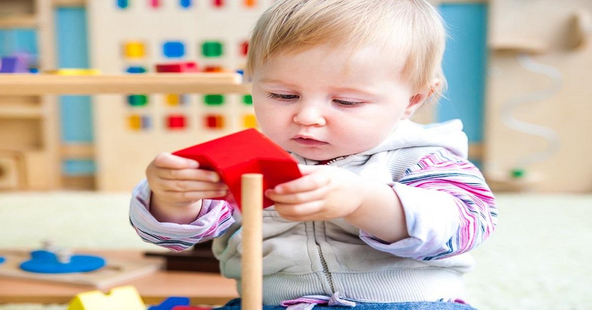 5 descobertas da neurociência que norteiam a pedagogia Montessori: