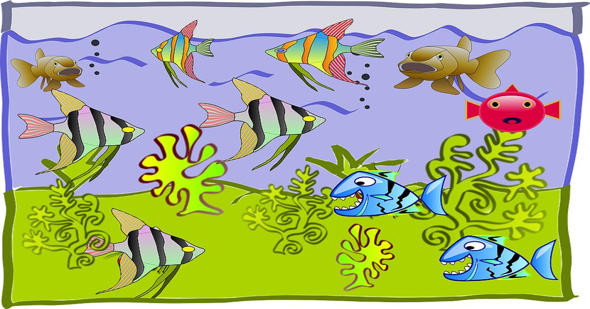 Plano de aula sobre Animais aquáticos para Educação Infantil