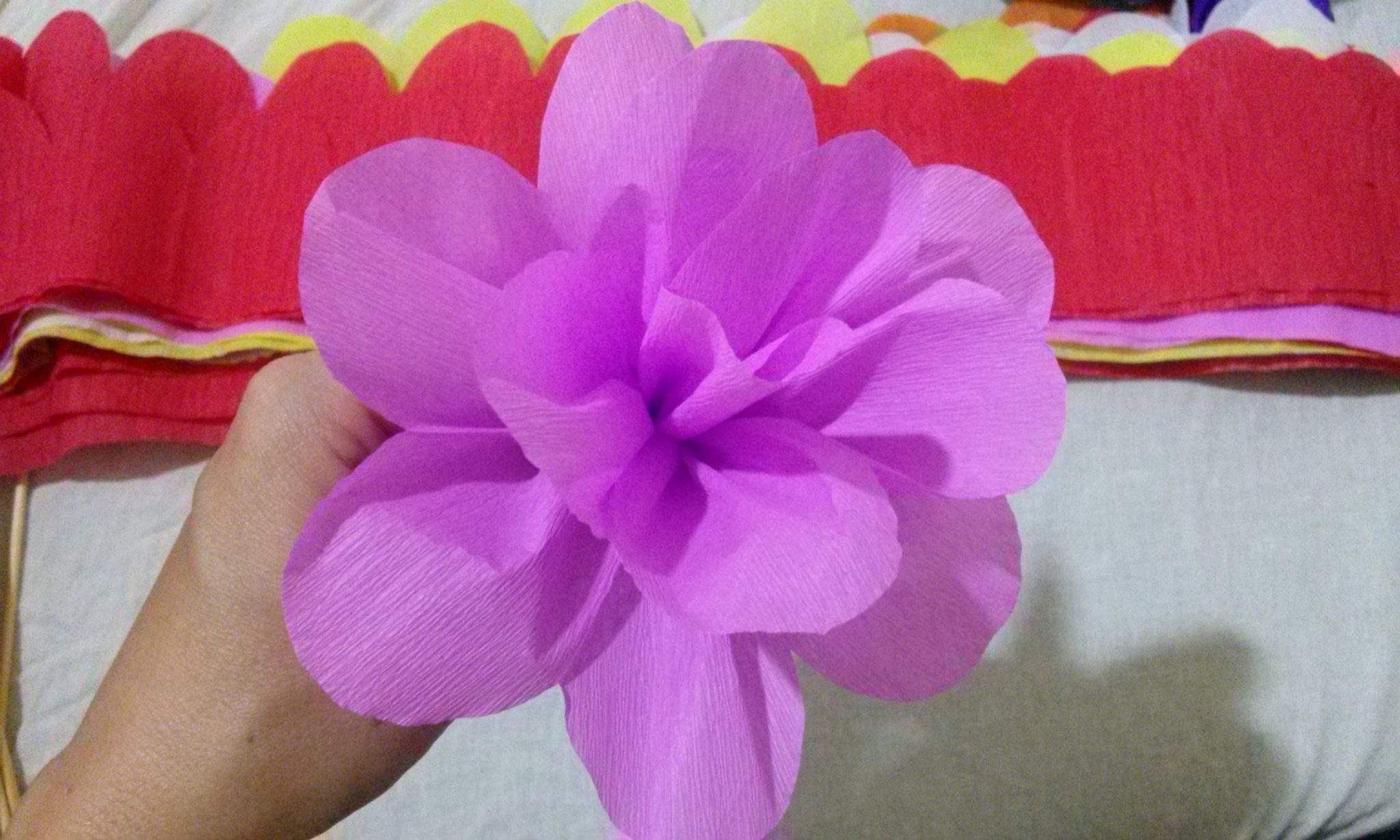 Ideias de Flores de papel crepom com passo a passo u2014 SÓ ESCOLA -> Decoração De Festa Com Papel Crepom Passo A Passo