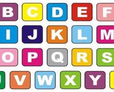 Alfabetização e o desenvolvimento da zona proximal