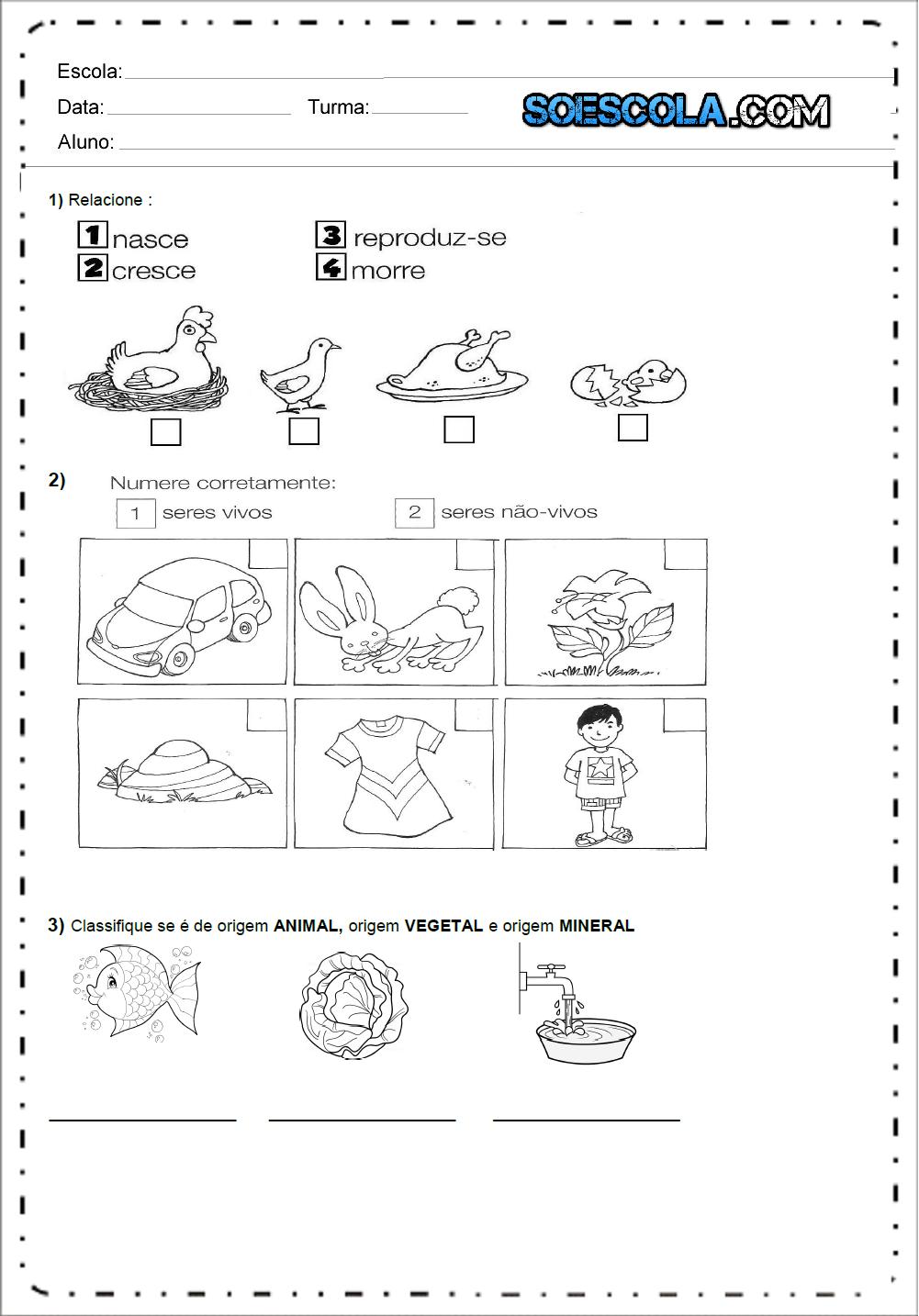 Atividades de Ciências 1 ano - Ensino Fundamental - Para Imprimir.