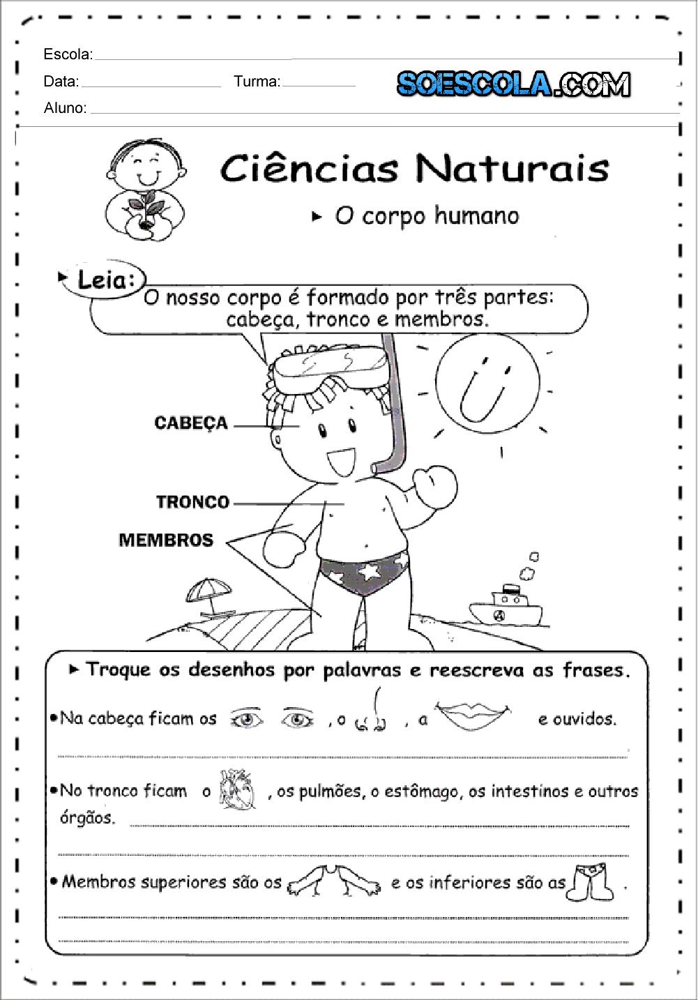 Atividades de Ciências 3 ano do Ensino Fundamental - Para Imprimir.