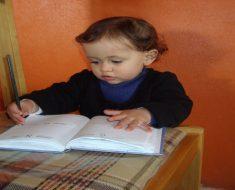 Atividades Pedagógicas para crianças de 0 a 3 anos.