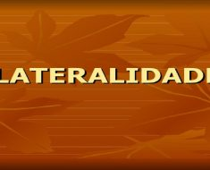 Lateralidade: O que é, como se desenvolve e sugestões de atividades.
