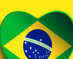 14 Atividades Dia da Bandeira - Para Imprimir - Ensino Fundamental