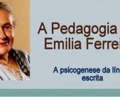 O Processo de Alfabetização da criança segundo Emília Ferreiro