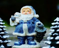 Texto A árvore de Beto para trabalhar o Natal nas series iniciais