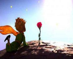 É loucura odiar todas as rosas porque uma te espetou – O Pequeno Príncipe