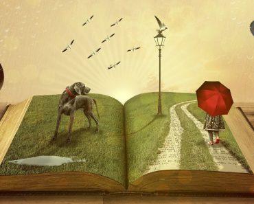 A leitura o transforma em uma pessoa mais empática