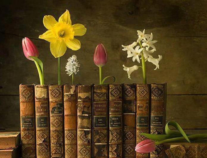 Ler regularmente aumenta sua expectativa de vida, diz estudo