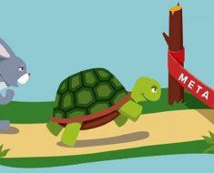 Atividades com a fábula A lebre e a tartaruga