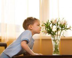 Os cheiros da infância registrados na memória