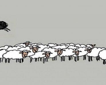 Às vezes a ovelha negra é a pessoa mais saudável da família