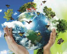 Atividades meio ambiente para educação infantil