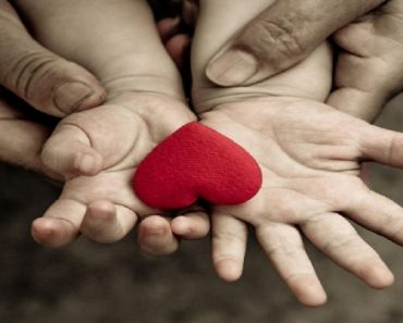 Empatia e Inteligência Emocional são importantes