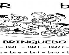 Ficha de Leitura BR