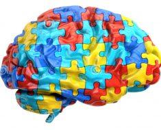 Estudo diz que cérebro de autistas trabalha em velocidade diferente