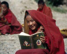 O conto budista que nos ensina a IGNORAR quem nos machuca