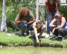 Professora de colégio estadual em Campo Grande cria projeto ecológico e é premiada