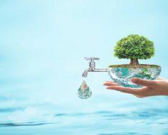Projeto Dia Mundial da água na escola