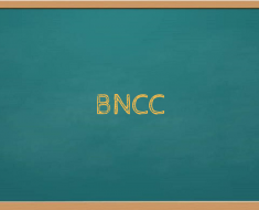 Saiba mais sobre os campos de experiência da BNCC