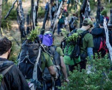 Jovens plantam 11.500 árvores para recuperar uma floresta queimada na Argentina