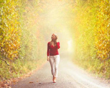 Caminhar regenera o cérebro
