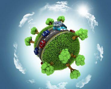 Plano de aula Educação Ambiental para o ambiente ou para o ser humano