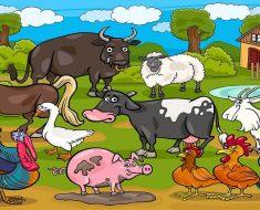 Projeto animais que despertam nossa curiosidade