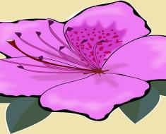 Projeto flor