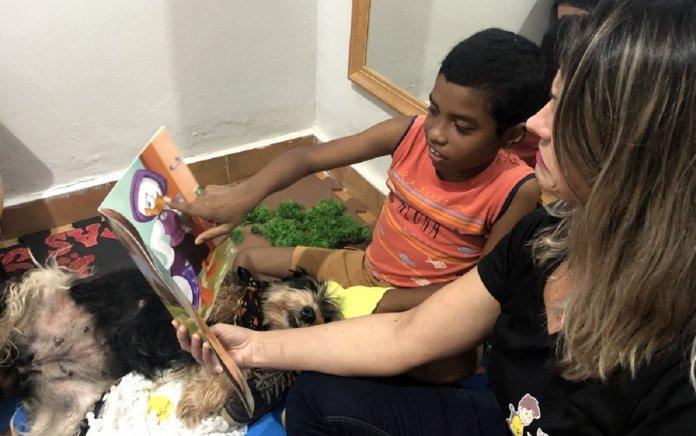Menino com autismo volta a conversar após terapia com cães