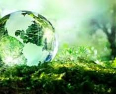 A biosfera e o ciclo natural da matéria no planeta