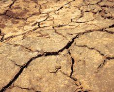 A formação do solo