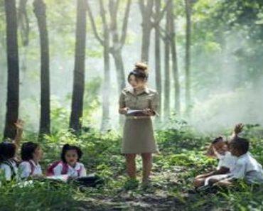 Importância da educação ambiental na formação do pedagogo