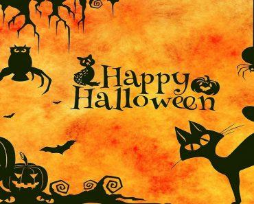 Atividades para o Dia das Bruxas ou Halloween
