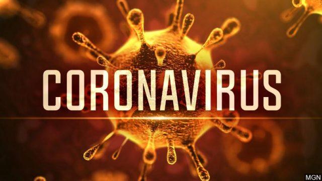 Cartilha sobre o corona vírus