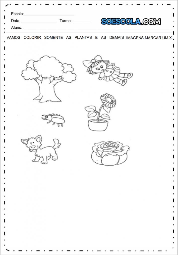 Atividades Edução Infantil Nível 4 - Plantas